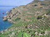 Antalya Gazipaşada satılık tarla, muz üretimine uygun